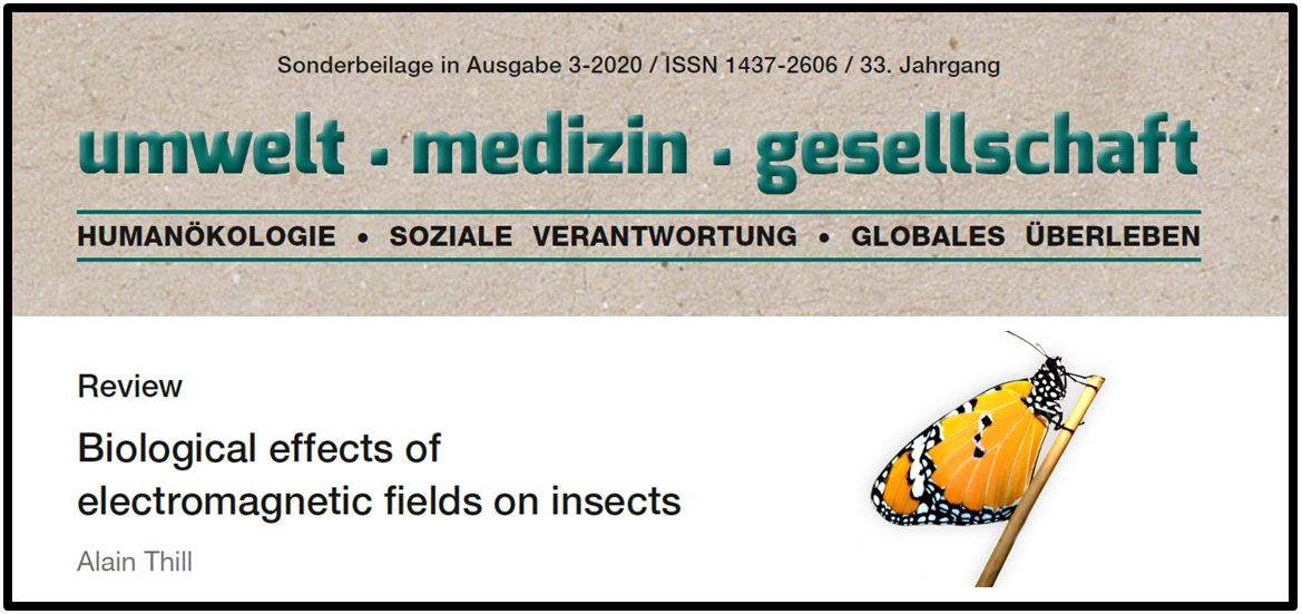 Thill og insekter