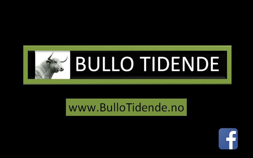 Bullo Tidende 2