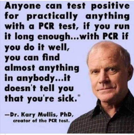 Kary Mullis PCR test